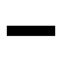 Zizai logo