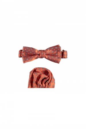 Wezet bow tie multi dot logo