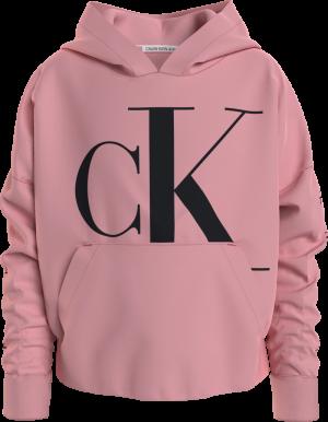 MINI MONOGRAM CK HOODIE logo
